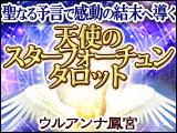 聖なる予言で感動の結末へ導く!天使のスターフォーチュンタロット