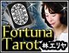 世界熱狂の的中率!【神々が宿る神秘の78枚】フォルトゥーナタロット